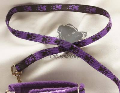 Dog collar and leash violet