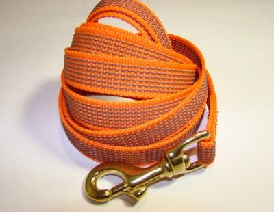 Leash with rubber webbing
