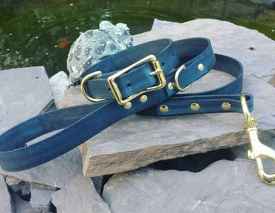 Dog collar and leash navy blue