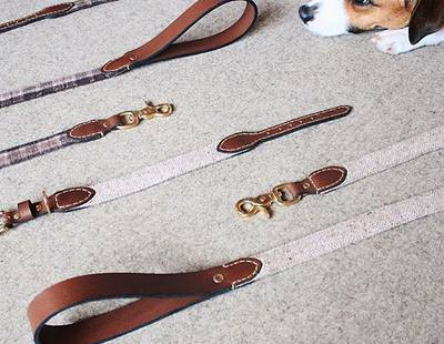 Collars and leashes Hunting Pony
