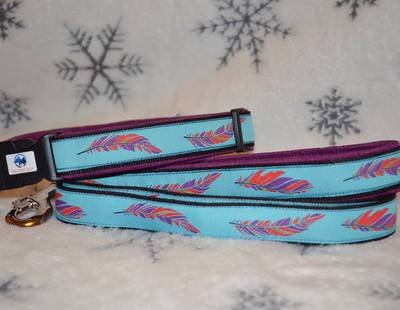 Dog collar and leash feathers