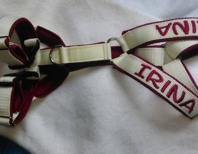 Dog harness vanilla/red