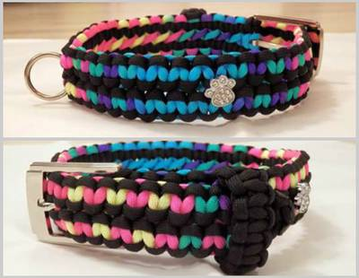 Paracord dog collar colorful