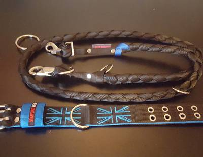 Dog collar and leash flag