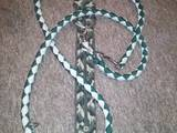 Switching leash with collar