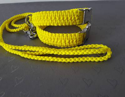 Paracord collar and leash yellow