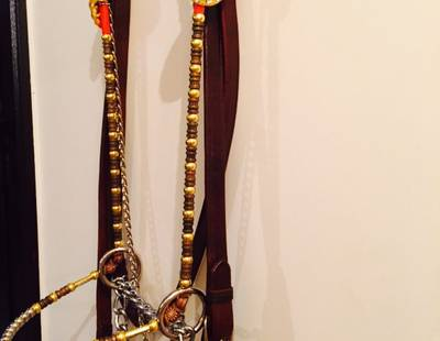Decorated horse halter