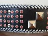 Decorated dog collar