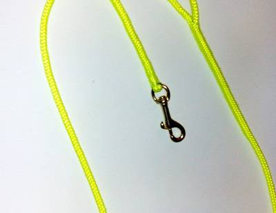 Round nylon leash