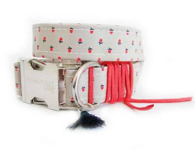 Dog collar strawberries