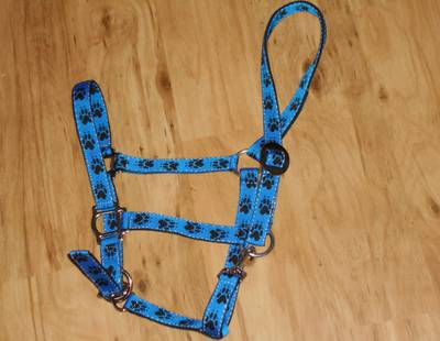 Dog harness Paws