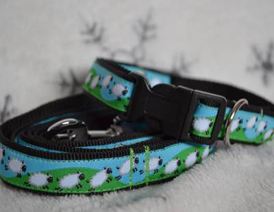 Dog collar and leash sheep