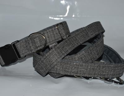 Collar and leash grey