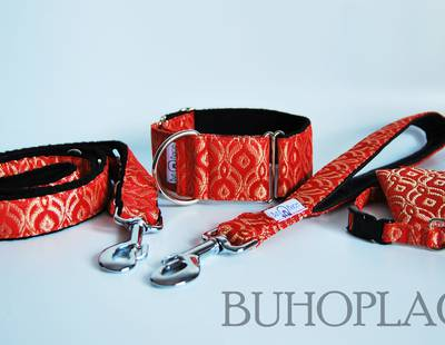 Dog collars and leashes Buhoplace