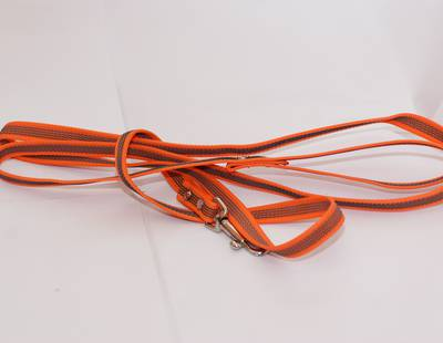 Leash with orange rubber webbing