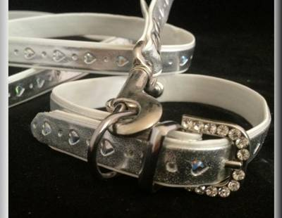 Dog collar and leash silver