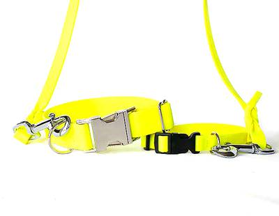 Dog collars and leashes yellow