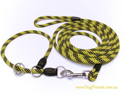 Dog collar and leash DogPresent