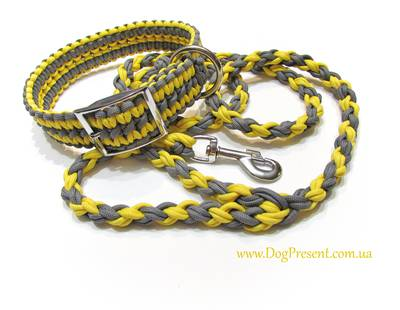 Dog collar and leash yellow/grey