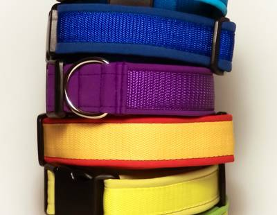 Dog collars softshell