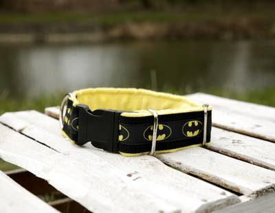 Dog collar batman