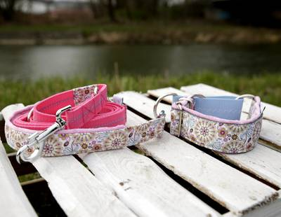 Dog collar and leash floral