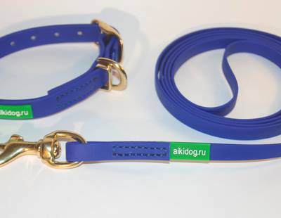Dog collar and leash Aikidog