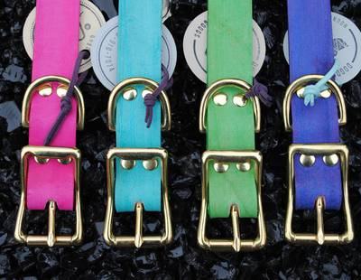 Dog collars various colours