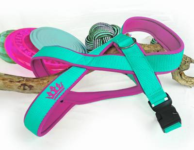 Harness pink/green