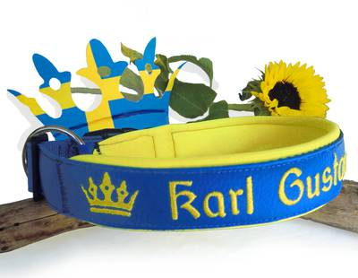 Dog collar - blue/yellow