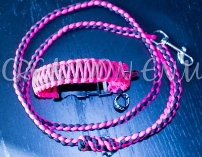 Paracord collar and leash