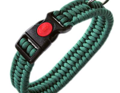 Paracord leash green