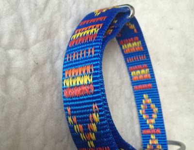 Dog collar Indian