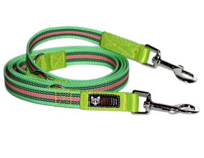 White fox leash