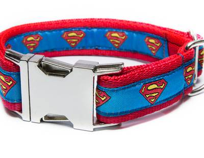 Dog collar Superman