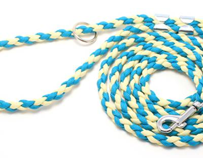 Dog leash yellow/blue