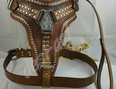 Dog harness Desi-art